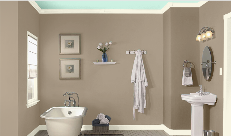 Bathroom wall color, Sea Lilly by Valspar. (With images .