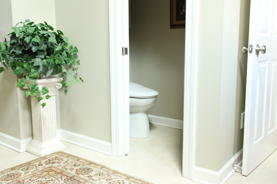 Why I Want a Separate Toilet Room | Checking In With Chels