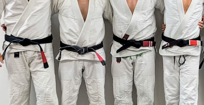 How Many BJJ Black Belts Are There? - Let's Roll B