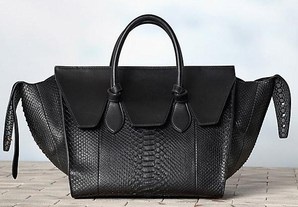 The Bags of Celine Winter 2013 - PurseBl