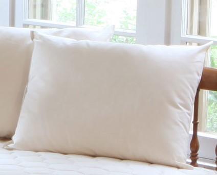 Organic Cotton Pillow Cov