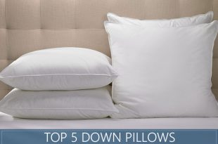 The 5 Highest Rated Down Pillows Available in 2020 - Reviews & Ratin