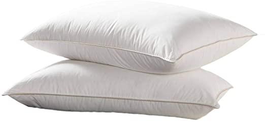 Amazon.com: Luxurious Goose Down Pillow - 1200 Thread Count .