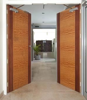 Fire Door Designs