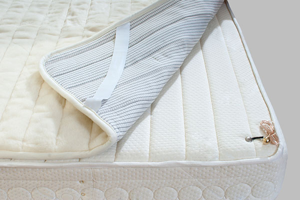 The Best Bed Bug Mattress Covers to Keep You Protected | Termin