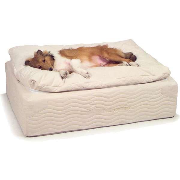 Ultimate Dog Bed | Cool dog beds, Orthopedic dog bed, Designer dog .