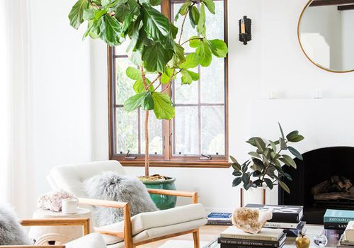 Best Small Living Room Ide