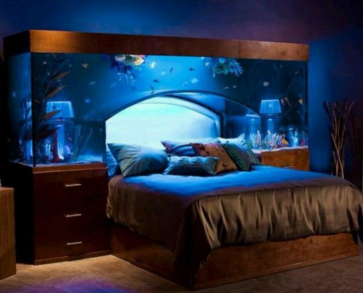 Water bed with fish (With images) | Awesome bedrooms, Dream .