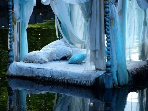 New definition of water bed (With images) | Blue decor, Home .